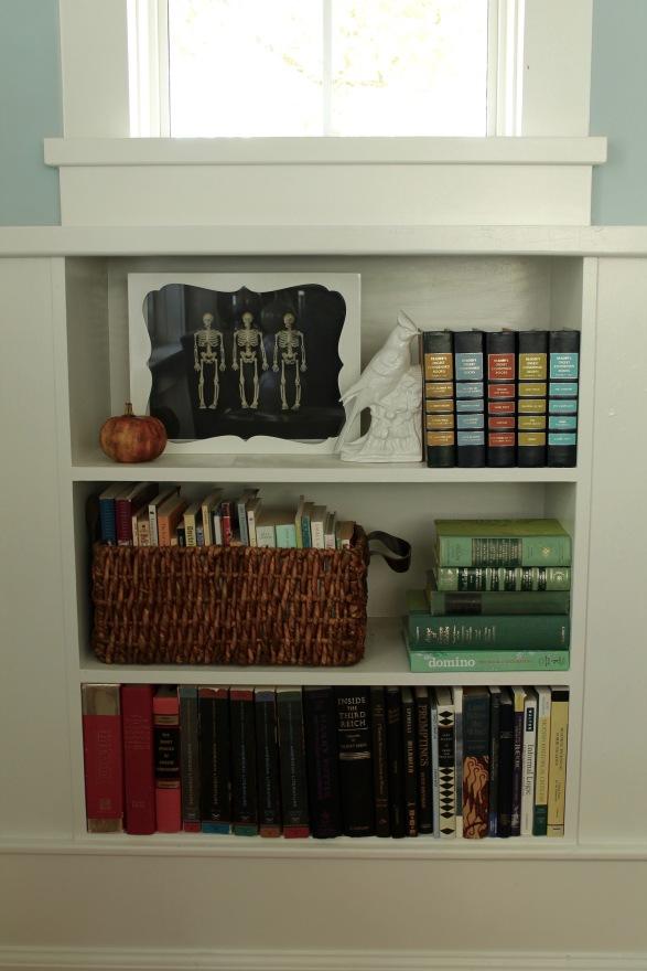 skeletons in bookcase