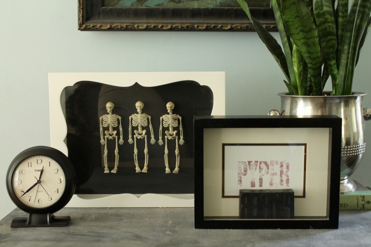 skeleton shadowbox